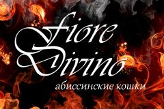 fioredivino-1