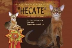 Hecate - питомник Абиссинских кошек (Новосибирск)