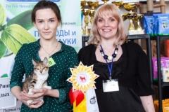 Сибириада 2017 - WCF-ринг молодых
