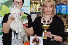 Сибириада 2017 - Шоу фолдов и страйтов