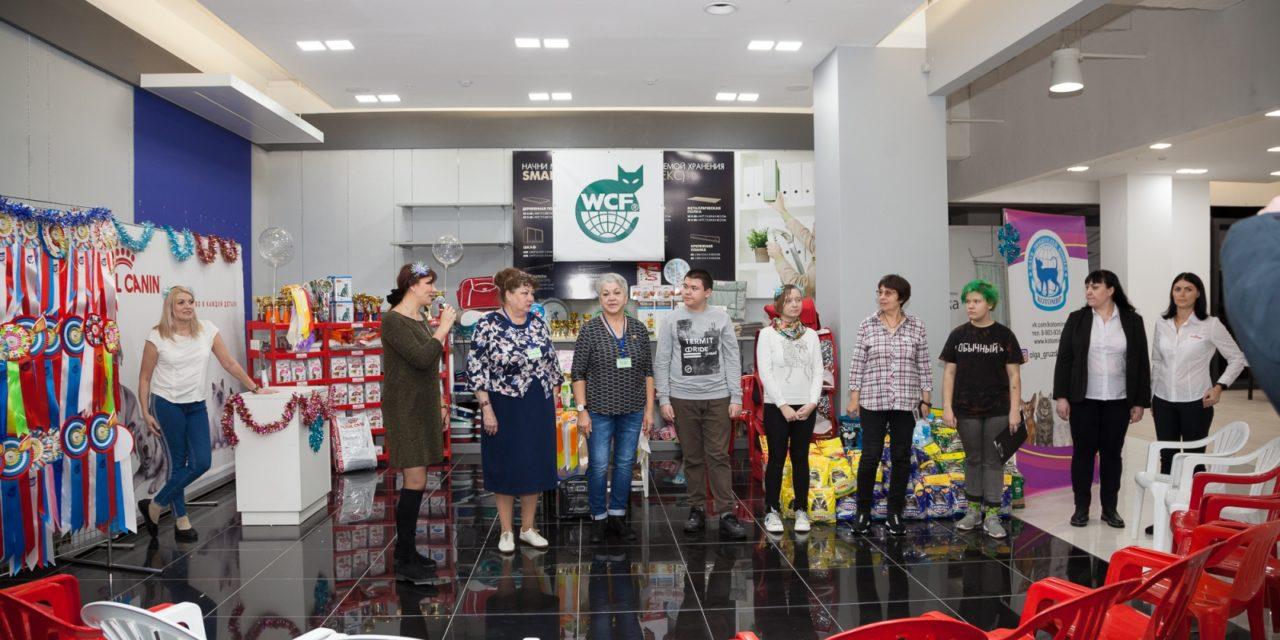 Результаты выставки кошек «Котовстречи в Барнауле» 21 декабря 2019 г